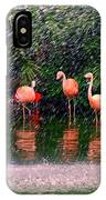 Flamingos II IPhone Case