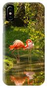 Flamingos Wading IPhone Case