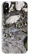 Flock Of Butterflies IPhone Case