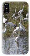 Flock Of Different Types Of Wading Birds IPhone Case