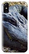 Florida Alligator IPhone Case