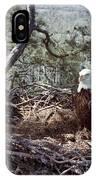 Florida: Bald Eagles, 1983 IPhone Case