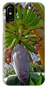 Florida Banana Flower And Fruit IPhone Case