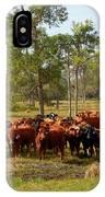 Florida Cracker Cows #1 IPhone Case