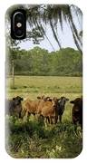 Florida Cracker Cows #3 IPhone Case