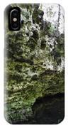 Florida Grotto IPhone Case
