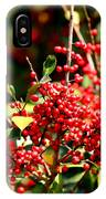 Florida Holly Berry's  IPhone Case