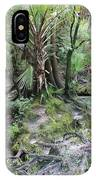 Florida Landscape - Lithia Springs IPhone Case