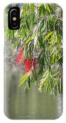 Florida Reflections IPhone Case