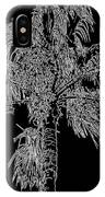 Florida Thatch Palm In Black And White IPhone Case