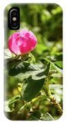 Flower Of Eglantine - 2 IPhone Case