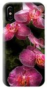 Flower - Orchid - Phalaenopsis - The Cluster IPhone Case