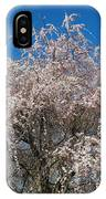 Flowering Cherry  IPhone Case