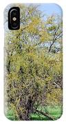 Flowering Huisache Tree  IPhone Case