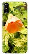 Flowering Maple IPhone Case
