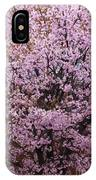 Flowering Pink In Spring IPhone Case