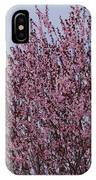 Flowering Plum In Bloom IPhone Case