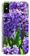 Flowering Purple Hyacinthus Flower Bulb Blooming IPhone Case