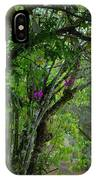 Flowering Trees Near The Path IPhone Case