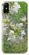 Flowers Of The Blackthorn Shrub IPhone Case
