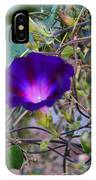 Flowers On Dupont Street IPhone X Case