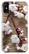 Flowers On Wall IPhone Case