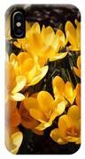 Flowery Sunshine IPhone Case