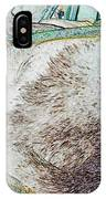 Fluf And Mouse IPhone Case