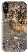 Fluffy Long-billed Curlew IPhone Case