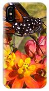 Flying Beauty IPhone Case