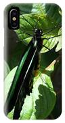Folded Up - Green And Black Butterfly IPhone Case