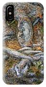 Foot Of The Tree IPhone Case