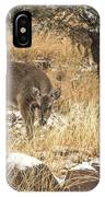 Foraging In The Snow IPhone Case