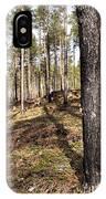 Forest Next Summer After A Fire IPhone Case