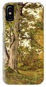 Forest At Fontainebleau IPhone Case