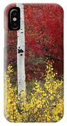 Forest Color IPhone Case