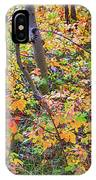 Forest Colors IPhone Case