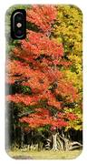 Forest Door IPhone Case