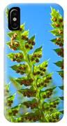 Forest Ferns Art Prints Blue Sky Botanical Baslee Troutman IPhone Case