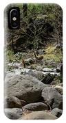 Forest Floor Near Oak Creek IPhone Case