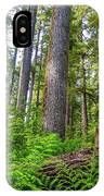 Forest Floor Of Hoh Rain Forest IPhone Case