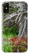 Forest Scene IPhone Case