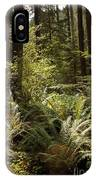 Forest Sunlight And Shadows  IPhone Case