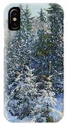 Forest's Fairy-tale. IPhone Case