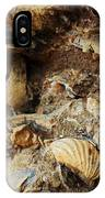 Fossil Shells IPhone Case