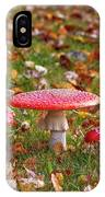 Four Fly Agarics Among Dead Leaves IPhone Case
