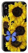 Four Sunflowers And Blue Butterfly IPhone Case