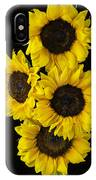 Four Sunny Sunflowers IPhone Case