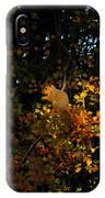 Fox Squirrel IPhone Case