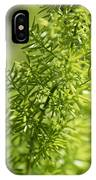 Foxtail Fern In Spring IPhone Case
